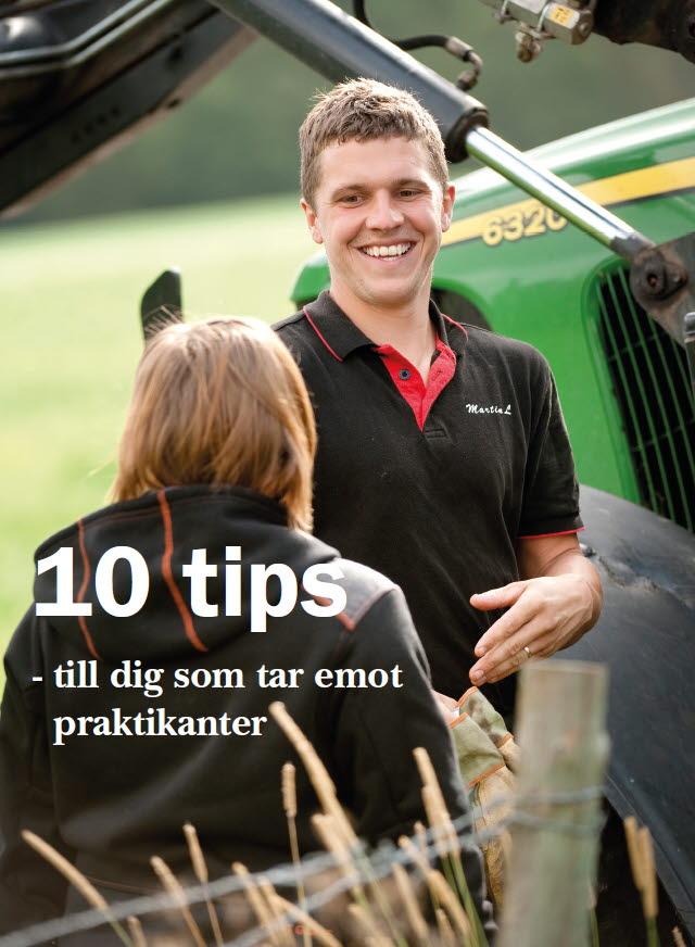 10 tips till dig som tar emot praktikanter