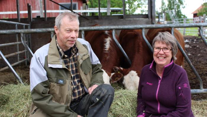 Årets nötköttsföretag i Jämtland
