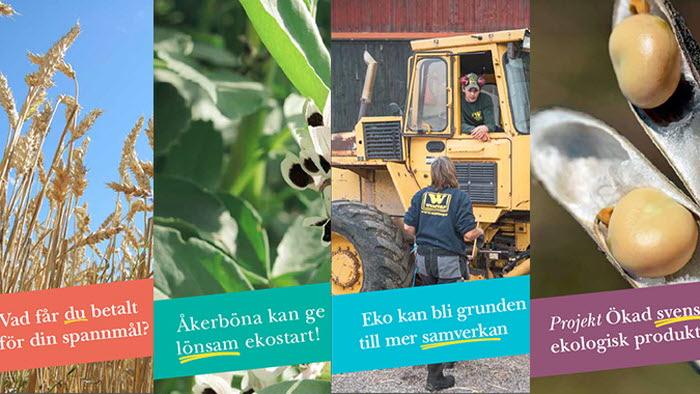 projekt ökad svensk ekologisk produktion