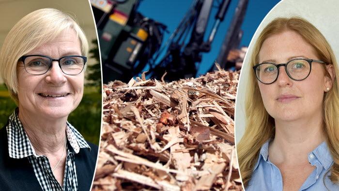 Maria Dirke och Jenny Näslund om LRFs arbete med förnybart och LULUCF