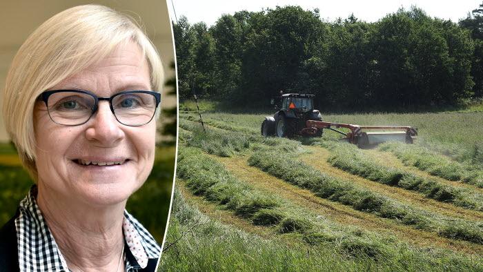 Maria Dirke förklarar varför LRF inte driver frågan om ersättning för kolinlagring