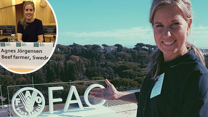 Agnes Jörgensen, svensk köttbonde från Jämtland, deltog på FN-seminarium om framtidens hållbara lantbruk