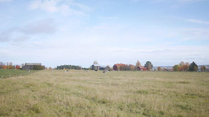 Vällvikens gård
