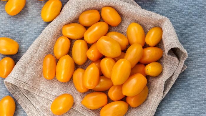 Santorange, tomat