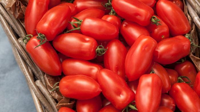 San Marzano mini, tomat