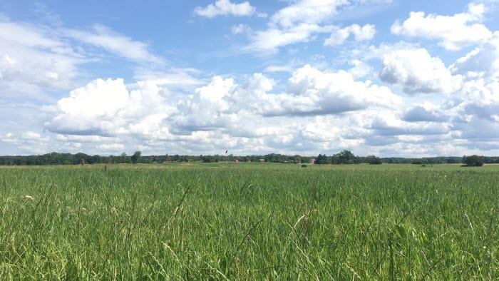 blå himmerl och åkrar i Östergötland
