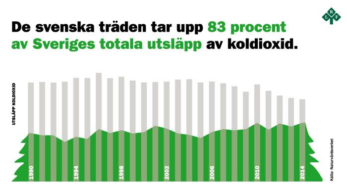 Grafik över skogens koldioxidupptag