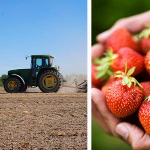 Regeringen bör rikta mer kraft mot arbetskraften inom lantbruksföretagen