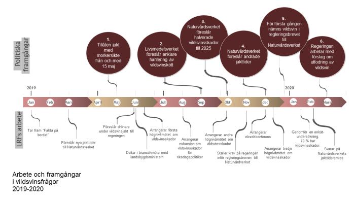 Tidslinje LRFs arbete med vildsvin 2019