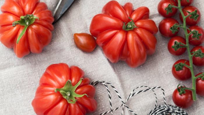 Oxhjärta, Pärltomat röd, Piccolini, tomater