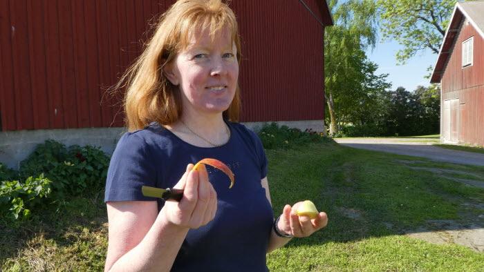 Anna Eklöf, Linköpings kommungrupp