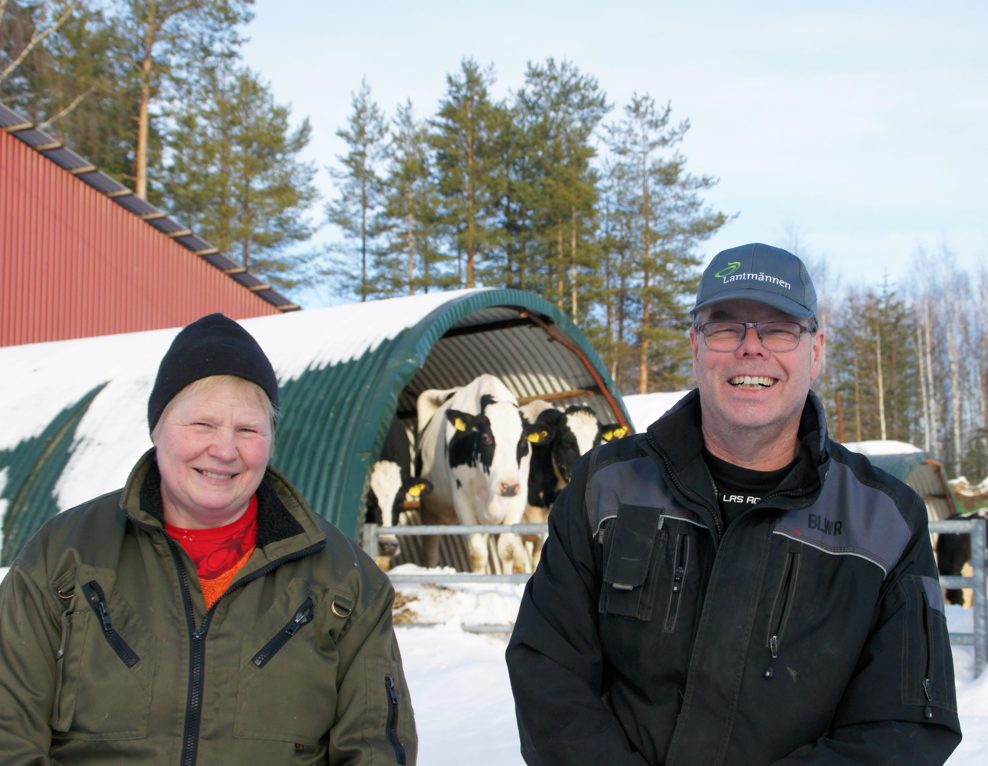 Årets gröna företag i Norrbotten 2020