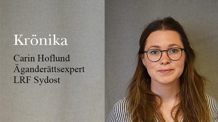 Krönika Carin Hoflund