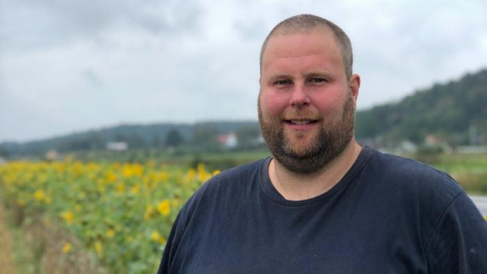 Niklas Gustafsson i solrosfält