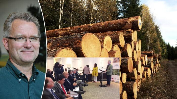 Lennart Ackzell imponerar på Chiles regering genom att prata om den svenska skogsbruket