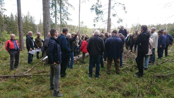 Skogsdag Hensbacka 2019