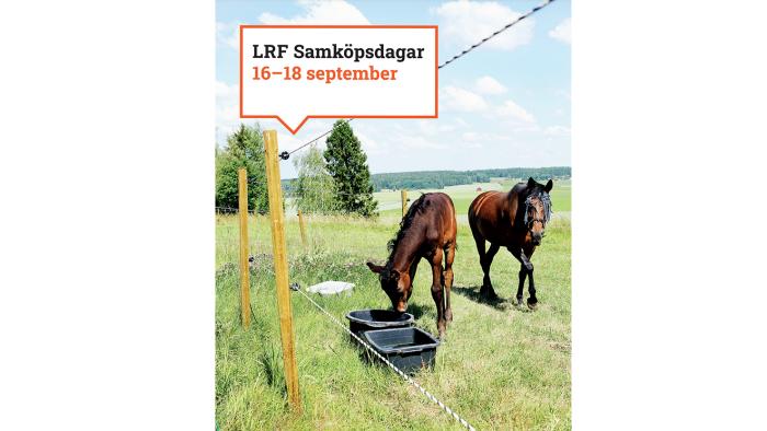 LRF Samköpsdagar Granngården september 2021