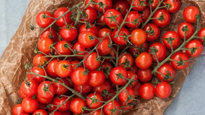 Piccolini, tomat