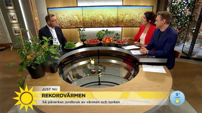 Marcus Söderlind pratar torka i TV4