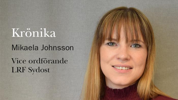 Krönika Mikaela Johnsson