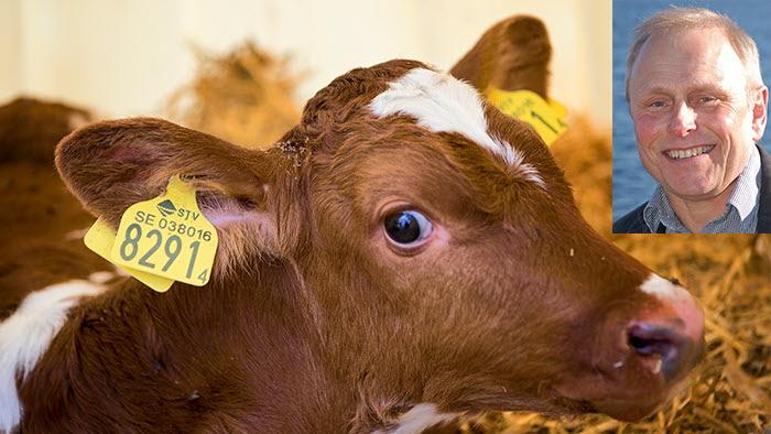 Brist på veterinärer hot mot djurhälsa
