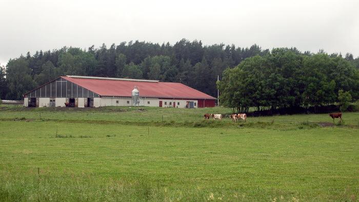 Mjölkladugård