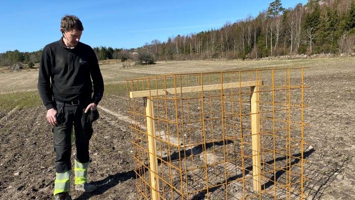 Johan Christensson, Klev, på sitt förstörda rapsfält av hjort och älg