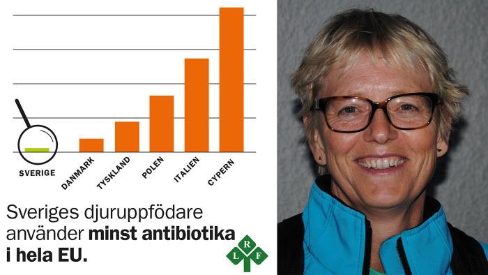Axfoundation ställer krav på antibiotikaanvändning. Bra tycker LRFs veterinär My Sahlman