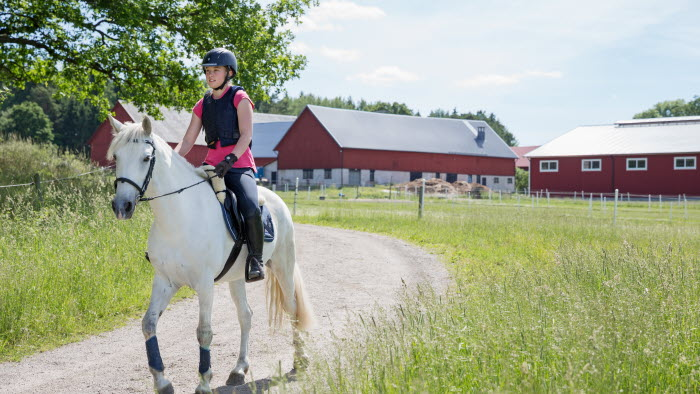 Flicka rider på häst på grusväg