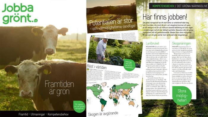 jobba grönts nya rapport Framtiden är grön
