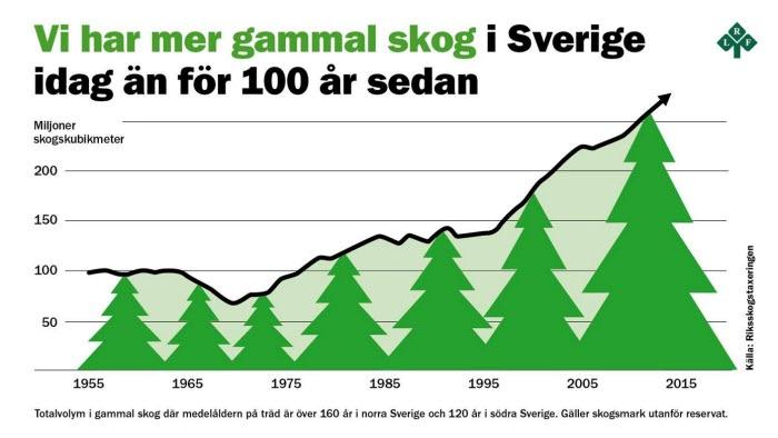Diagram gammal skog