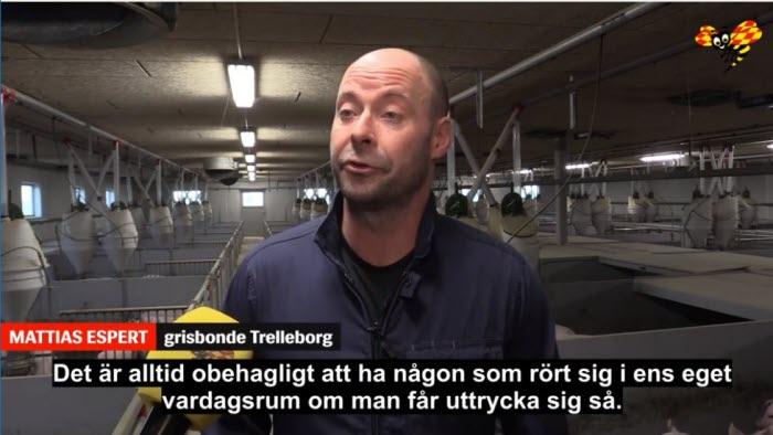 Mattias Espert är grisbonde som utsatts för intrång.