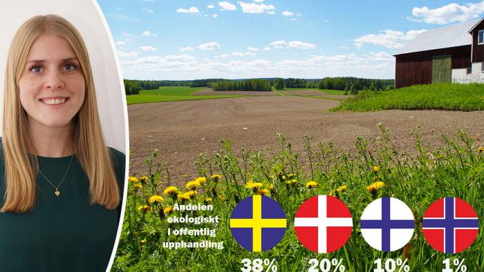 Ekologisk mat är vanligare i svensk offentlig upphandling än i våra nordiska grannländer