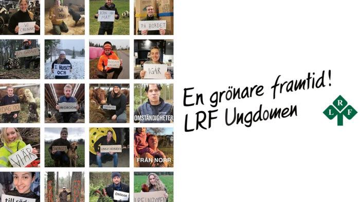 LRF Ungdomen