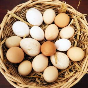 Lokalproducerade ägg
