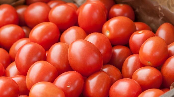 Flavorino, tomat