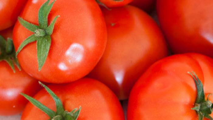 tomat, tomatpressträff