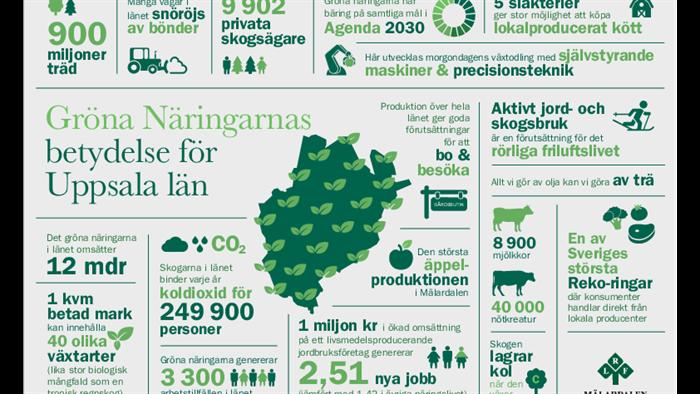 infografik Uppsala län