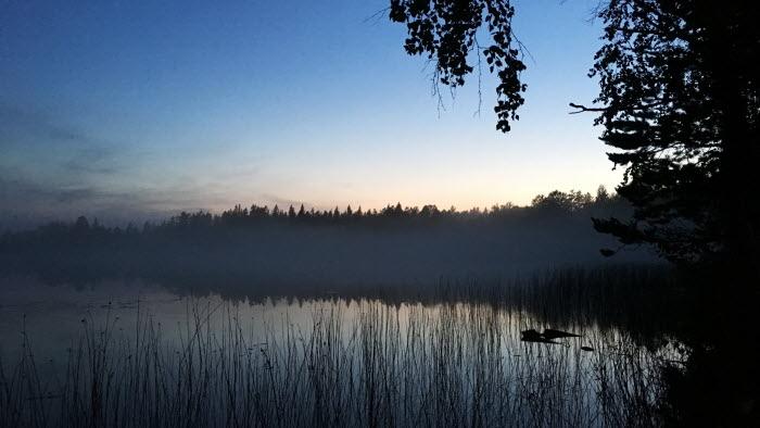 En sjö i dimma och solnedgång