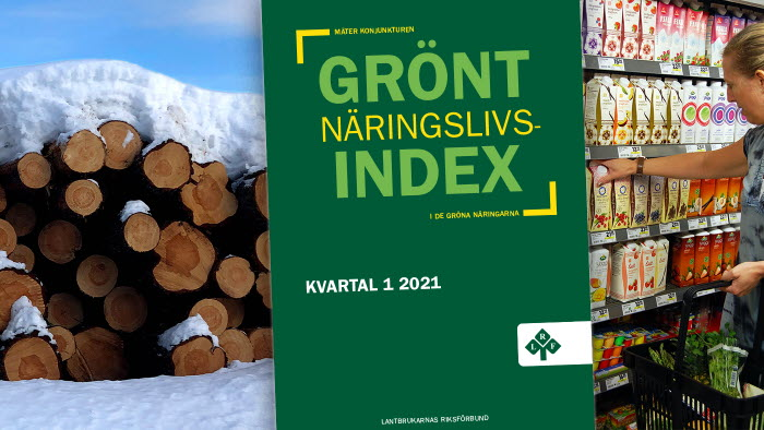 grönt näringslivsindex q1 2021